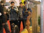 2011第五届中国(北京)国际红木古典家具展览会